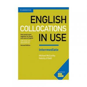 english collocations in use intermediate second edition
